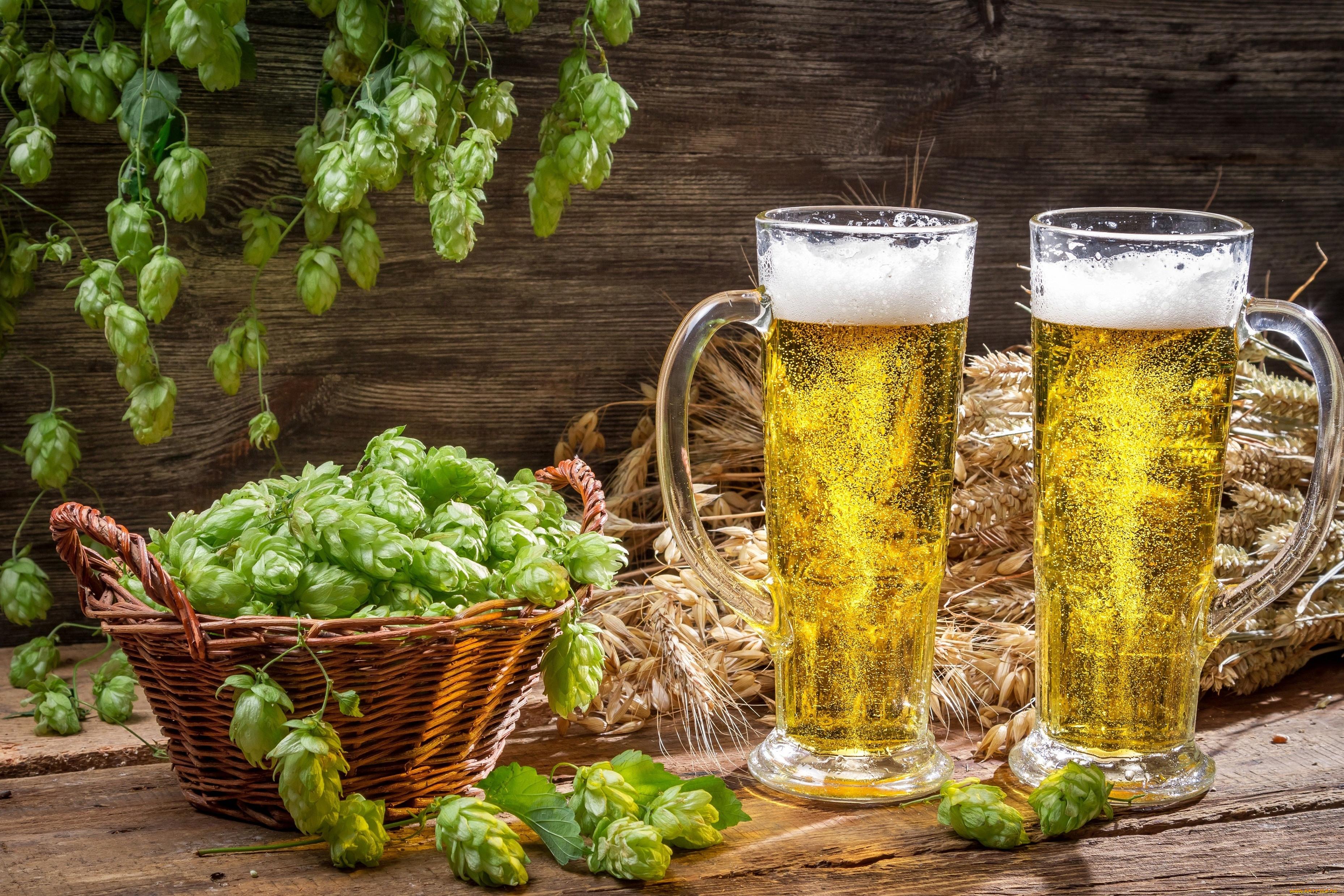 Картинки про пиво в хорошем качестве поможет подобрать